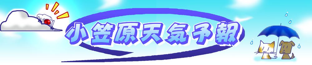 小笠原 天気予報